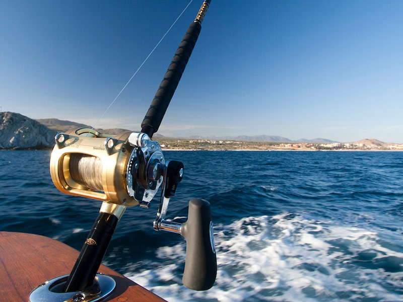 Transportation Service Los Cabos, BCS - Fishing