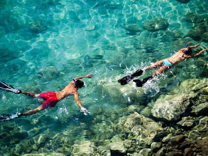 Snorkeling Los Cabos